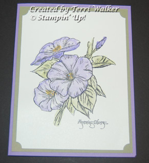 MorningGlorywatercolor