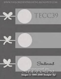 TECC39_TayloredExp