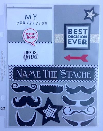 PL Moustache 2