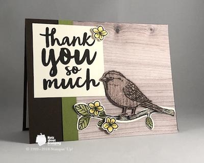 Best Birds card map