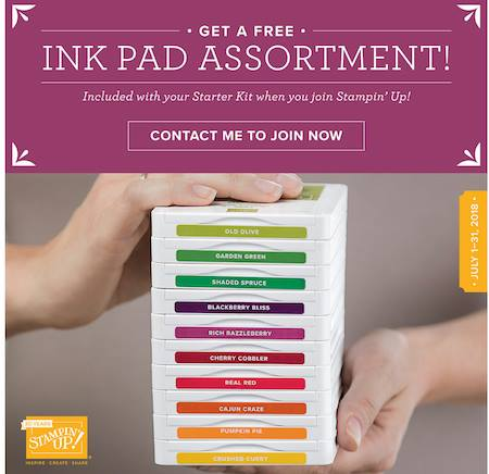 10 Ink Pads offer