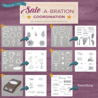 SAB Coordination 2
