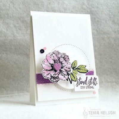 Tenia's card