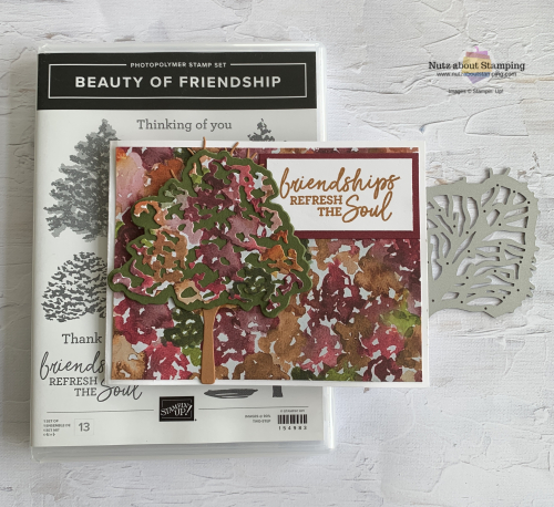 Beauty of Friendship with set